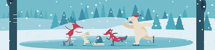 Vánoční veřejné bruslení 🎄